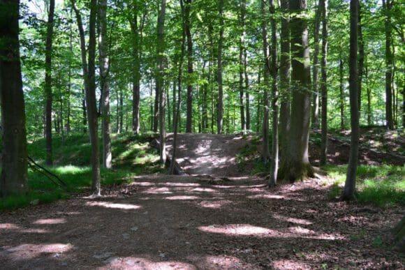 Wanderführer zum Archäologischen Wandern