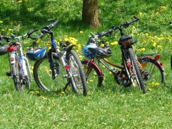 Die 5 schönsten Radtouren im Münsterland